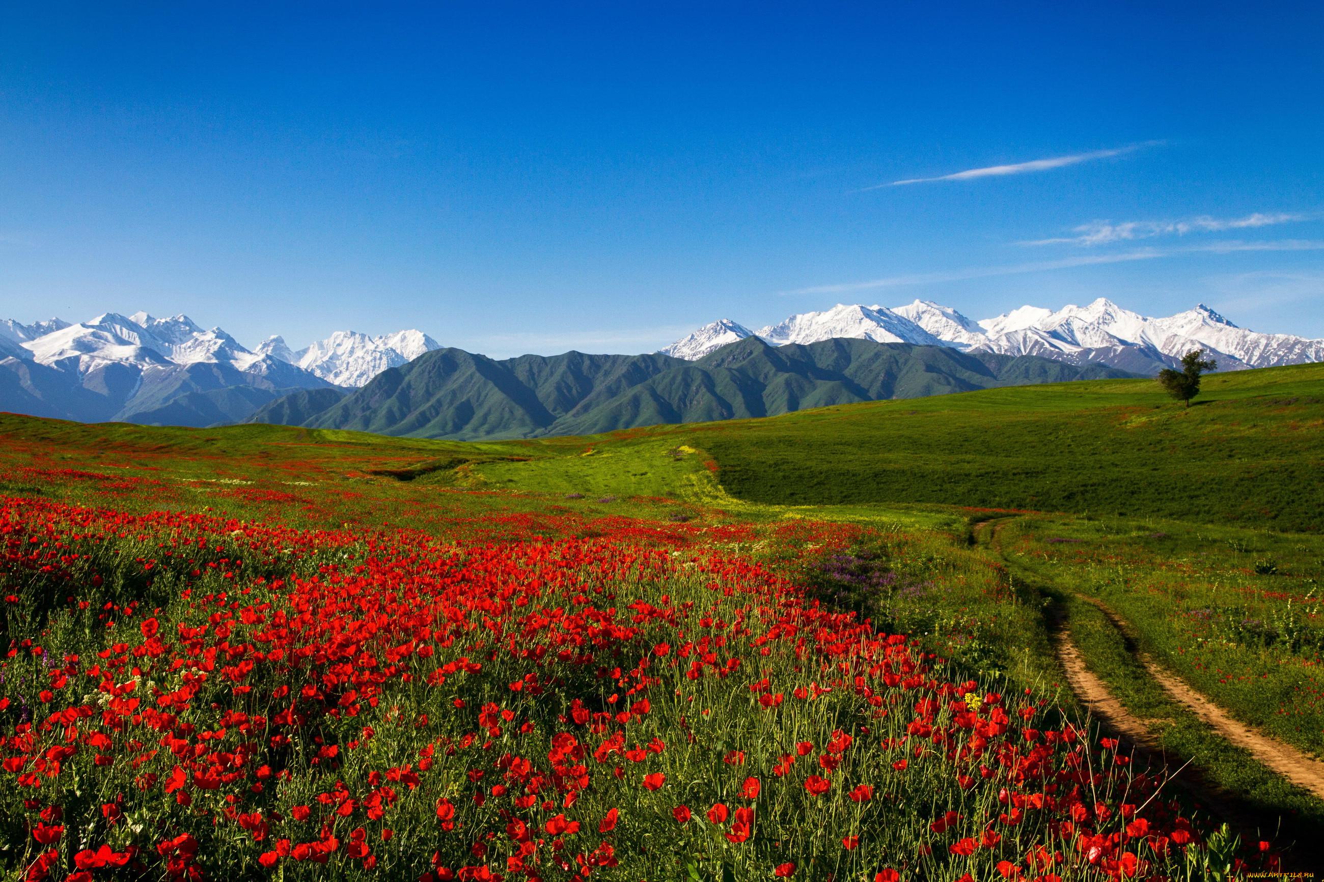 картинки на рабочий стол киргизия вид